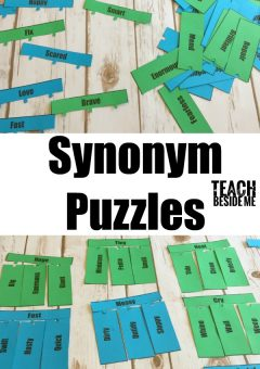 Vocabulary Lesson: Synonym Puzzles
