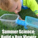 Summer Science: Build a Bug Viewer
