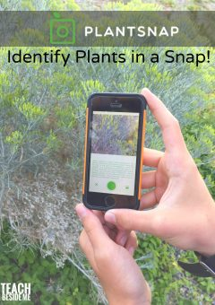 How To Identify Plants On a Nature Walk
