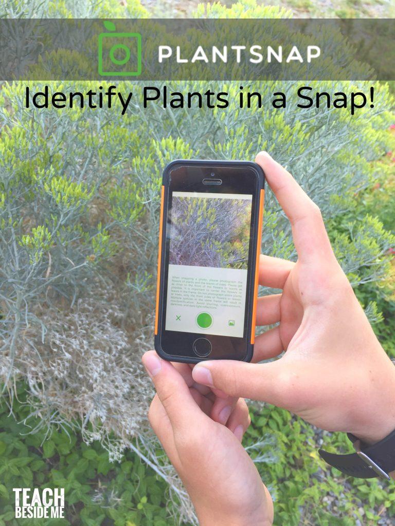 Plant Snap App- Identify Plants