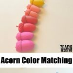 Acorn Color Matching