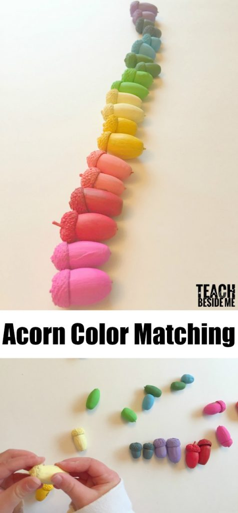 Rainbow Acorn Color Matching- Fall Nature