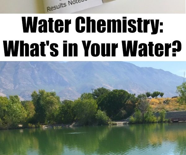 Water Chemistry Experiment with at Home Water Testing