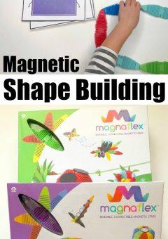 Shape Building With Magnaflex