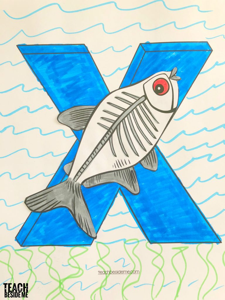 xray fish craft