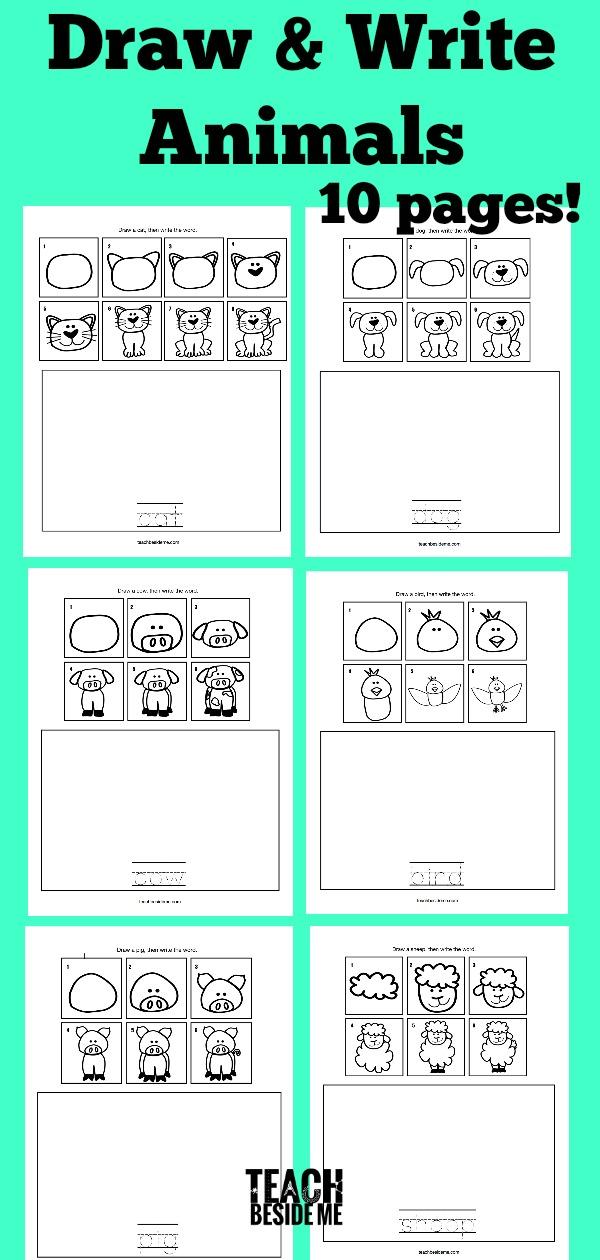 How to Draw Animals- Draw & Write Animals