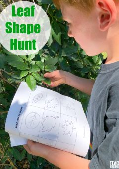 Leaf Shape Hunt