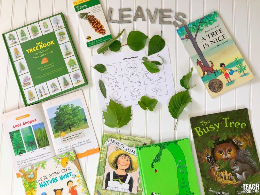 Tree and leaf books for kids