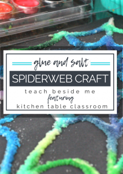 Glue and Salt Spiderweb Craft
