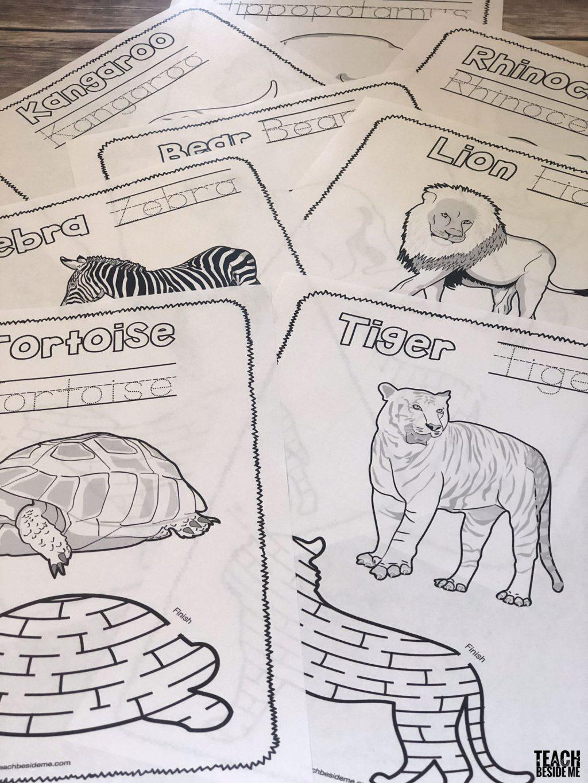 zoo printables