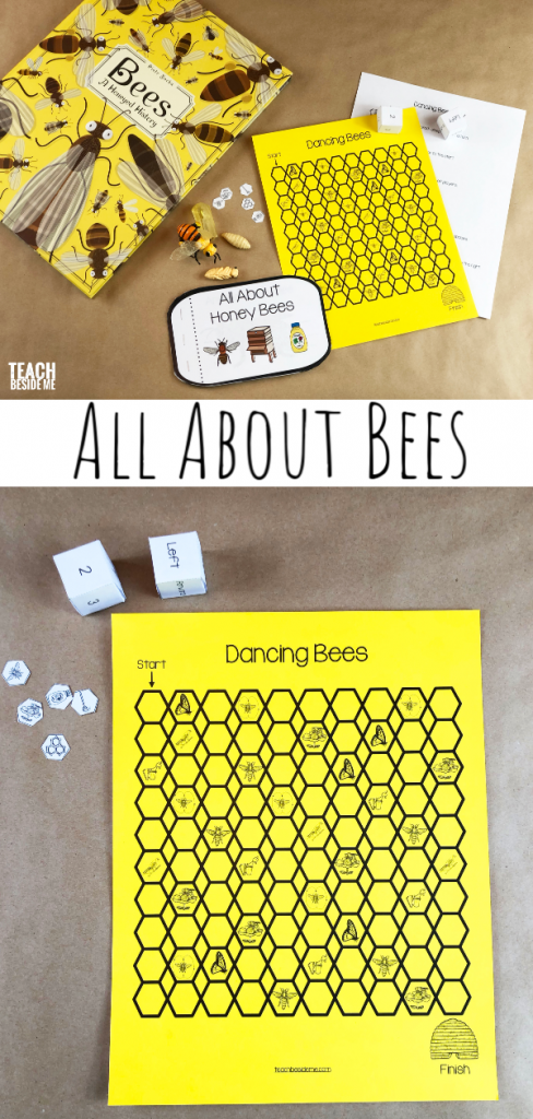 Bee life cycle and bee game
