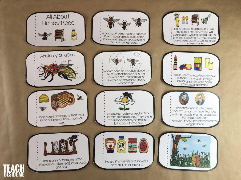 printable bee book