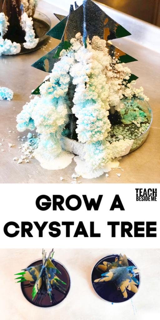 Grow a Crystal Tree- Christmas Science