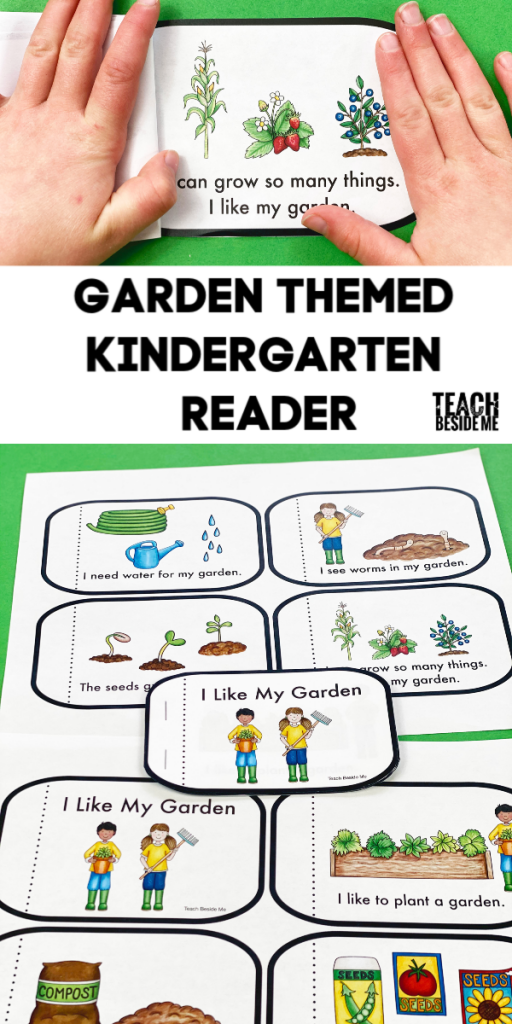 garden kindergarten reading book