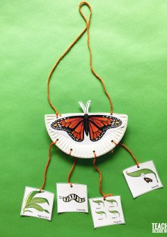 Monarch Butterfly Life Cycle Mobile