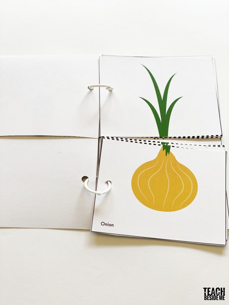 onion root vegetable tops and bottoms flip book