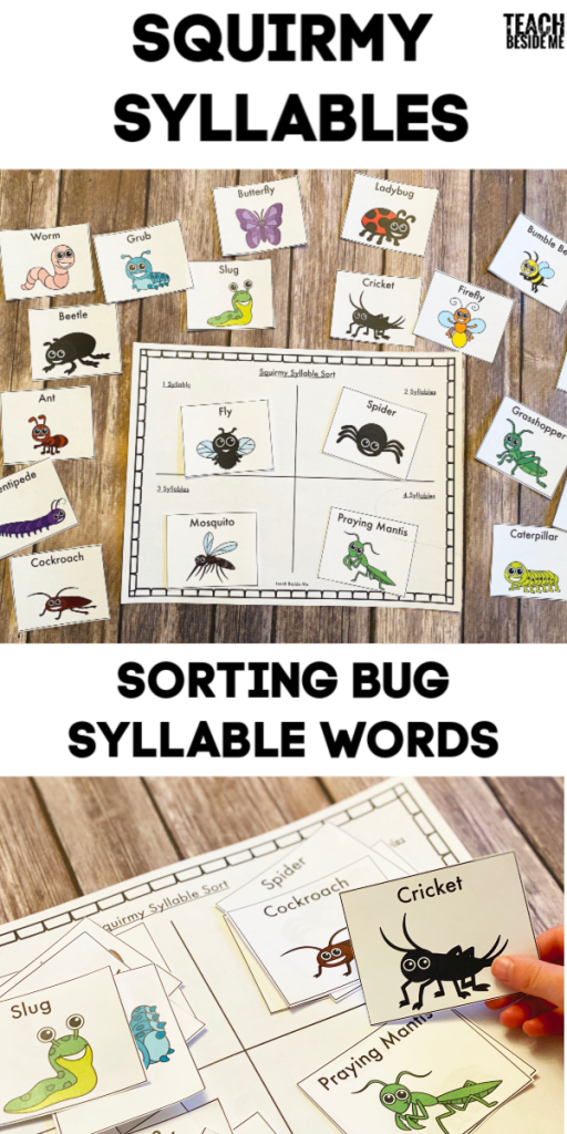 squirmy syllable words sort with insects