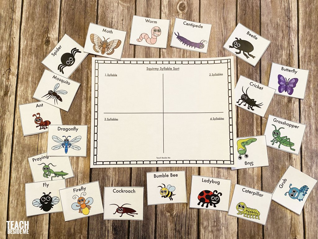 syllable words sort with insects and bugs