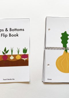 Root Vegetables Tops and Bottoms Flip Book