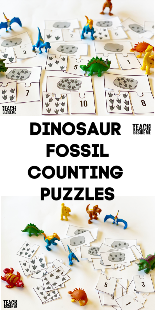 dinosaur fossil counting