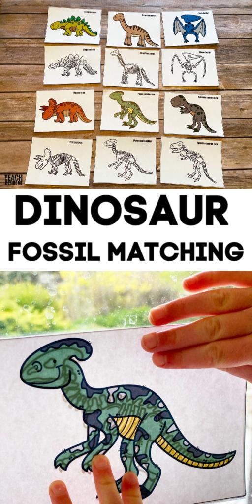 dinosaur fossil matching