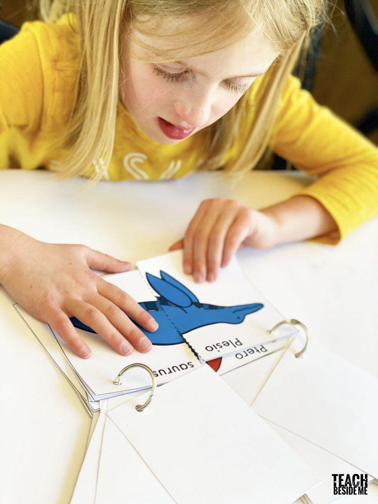 dinosaur flip book fronts and backs