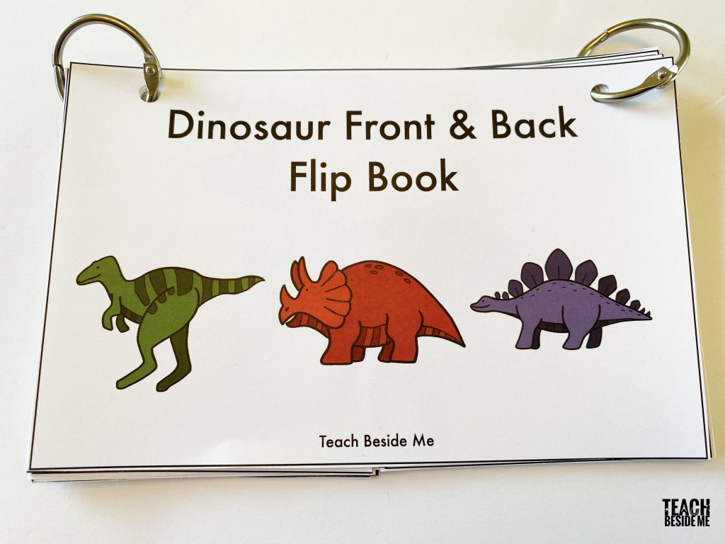 dinosaur front and back book
