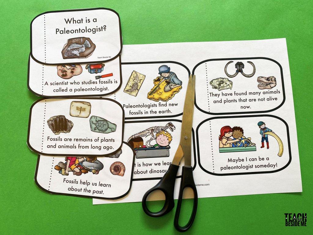 paleontologist mini book
